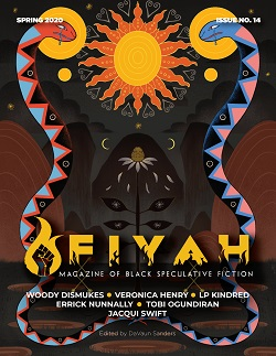 Fiyah 14 Cover